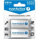 everactive C 5000mAh B2 ready to use