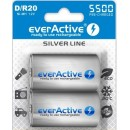 everactive D 5500mAh B2 ready to use